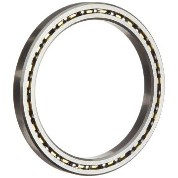 SD110CP0 Thin Section Bearings Kaydon